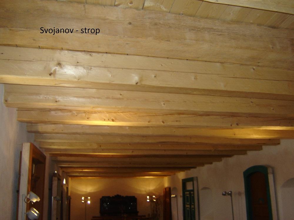 Svojanov stropy